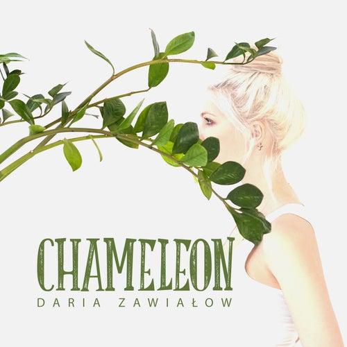 Chameleon by Daria Zawialow