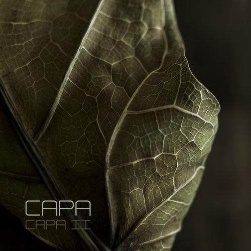 Capa II de CaPa