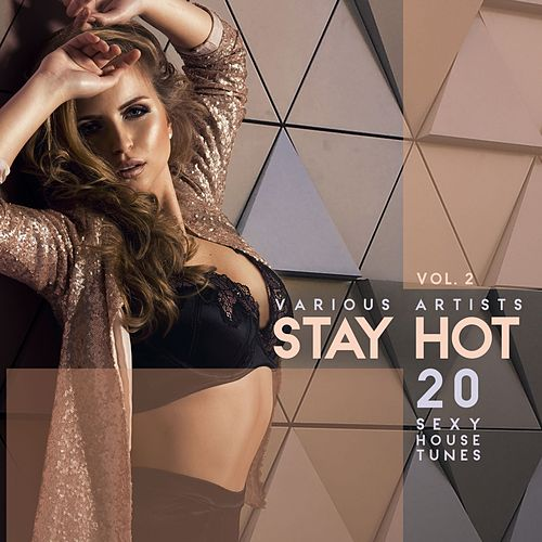 Stay Hot, Vol. 2 (20 Sexy House Tunes) by Various Artists