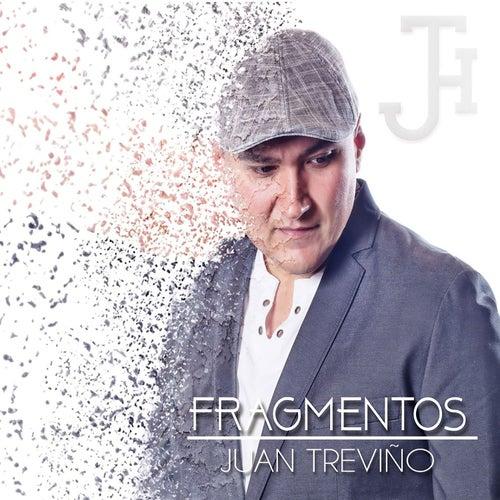 Fragmentos de Juan Treviño