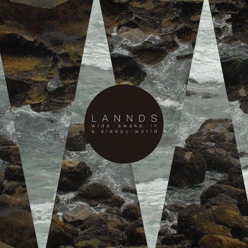 Wide Awake in a Sleepy World von Lannds