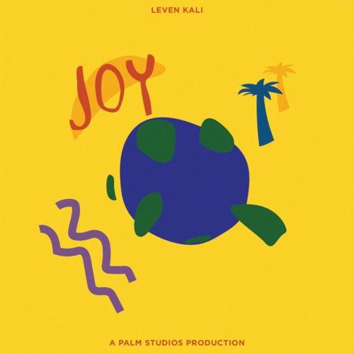 Joy by Leven Kali