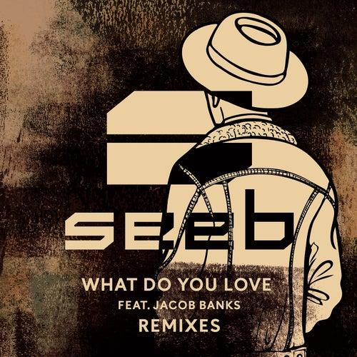 What Do You Love von seeb