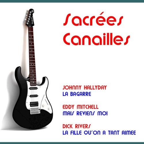 Sacrées canailles by Various Artists