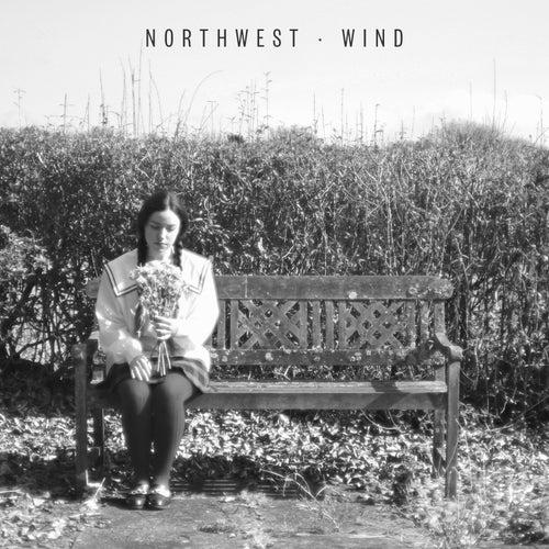 Wind by Northwest