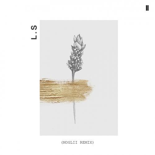 Lavender Scars (Moglii Remix) by Phebe Starr