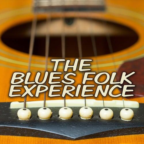 The Blues Folk Experience de Various Artists