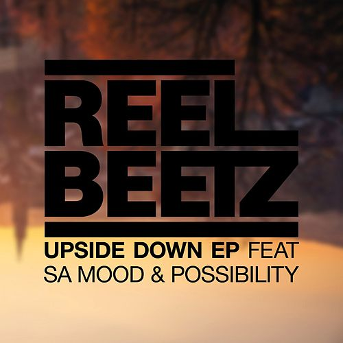 Upside Down by Reel Beetz