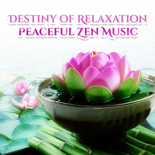 Lotus Flower Spring Rain By Music To Relax In Free Time Napster
