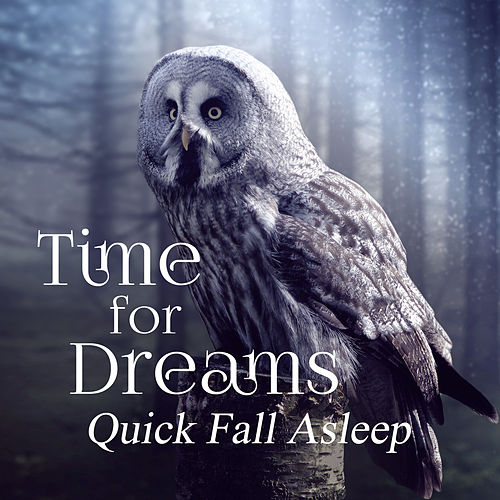 Time for Dreams: Quick Fall Asleep, Sleep Music, Calming Sounds for Evening, Relaxing Zen Song by Deep Sleep Music Academy