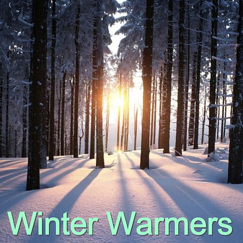 Winter Warmers by Various Artists