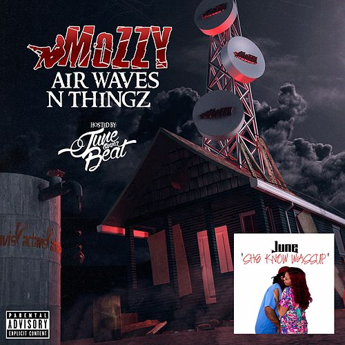 Air Waves N Thingz / She Know Wassup von Various Artists