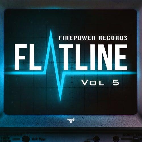Flatline Vol 5 by Various Artists