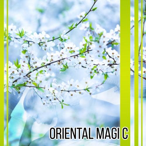 Oriental Magic – Sounds for Spa, Wellness, Pure Mind, Healing Reiki, Asian Zen Spa, Sensual Massage, Deep Meditation, Relaxation Music de Massage Tribe