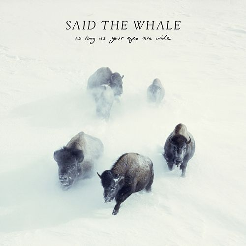 As Long as Your Eyes Are Wide by Said The Whale