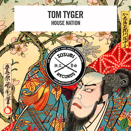House Nation (Instrumental Mix) by Tom Tyger