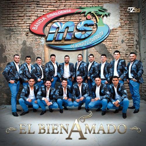 El Bien Amado - Single by Banda Sinaloense