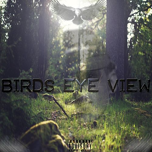Birds Eye View von Discrete