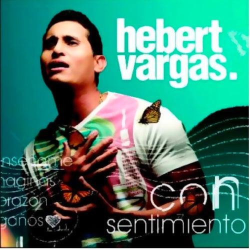 Con Sentimiento de Hebert Vargas