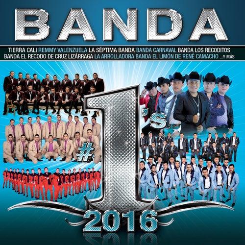 Banda #1's 2016 de Various Artists