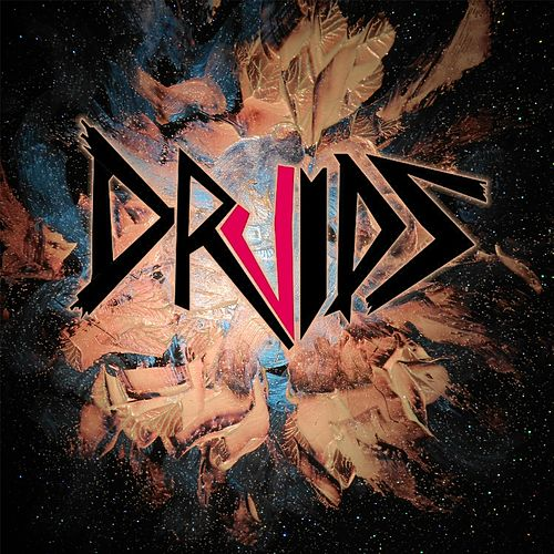 Druids by The Druids
