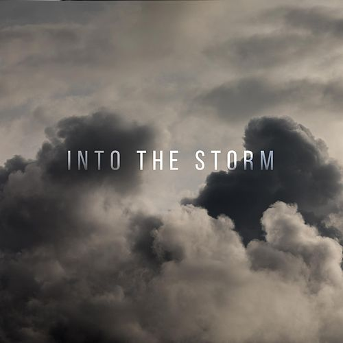 Into the Storm by The Brevet