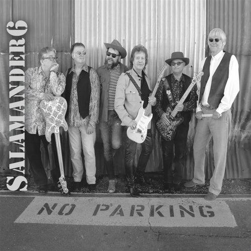 No Parking von Salamander6