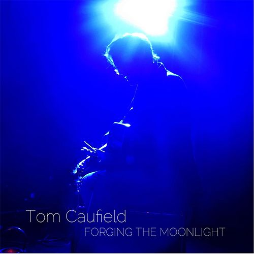 Forging the Moonlight von Tom Caufield