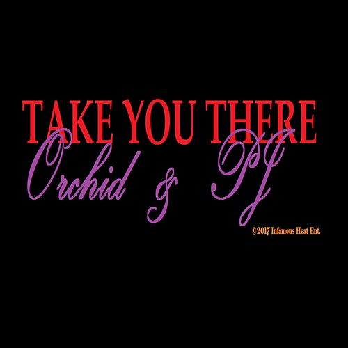 Take You There (feat. PJ) by The Orchid