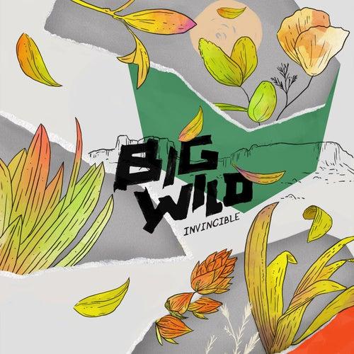 Invincible EP by Big Wild