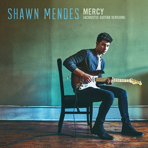 Mercy (Acoustic Guitar) by Shawn Mendes