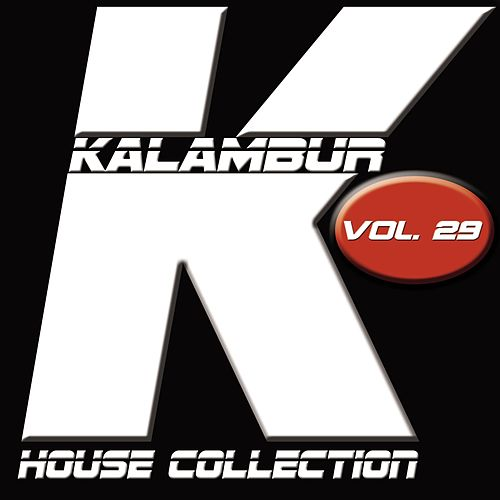 Kalambur House Collection, Vol. 29 de Dandy