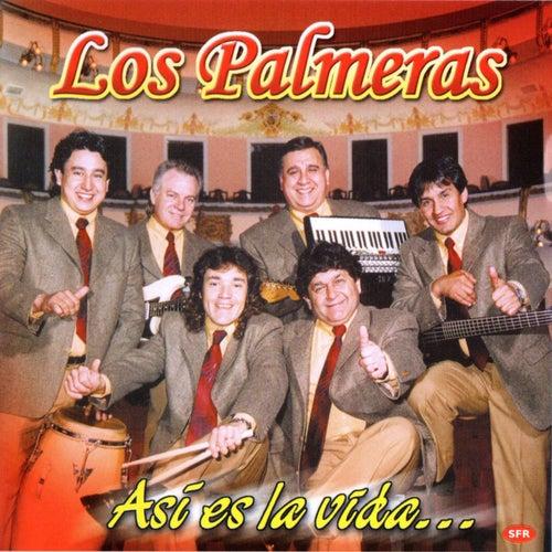 Así Es La Vida de Los Palmeras