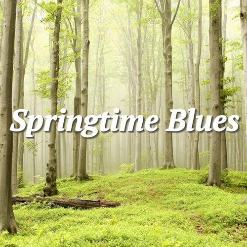 Springtime Blues de Various Artists