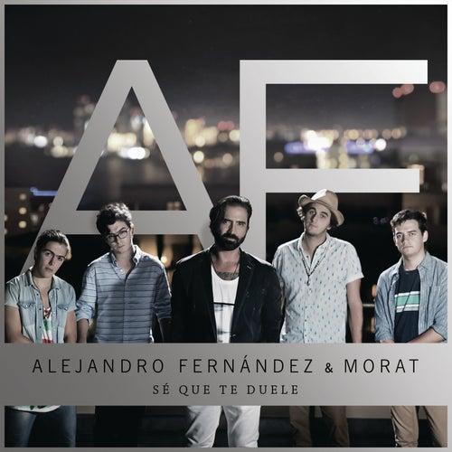 Sé Que Te Duele de Alejandro Fernández