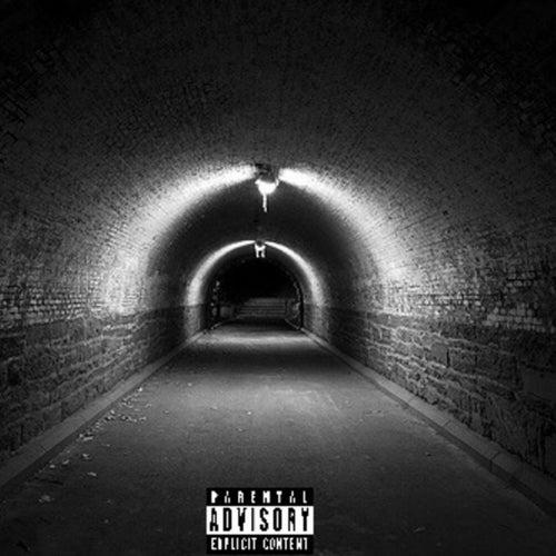 Tunnel Vision de Prince