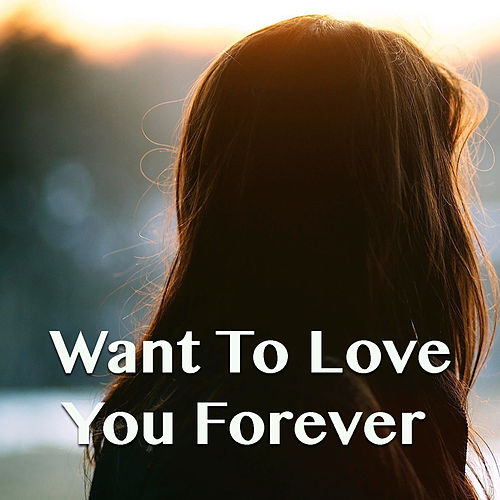 Want To Love You Forever by Various Artists