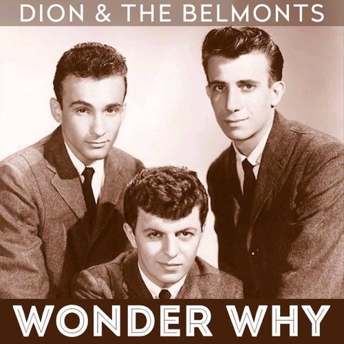 Wonder Why von Dion