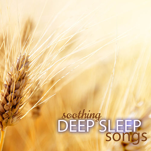 Soothing Deep Sleep Songs to Regulate Sleeping Pattern von Deep Sleep (2)