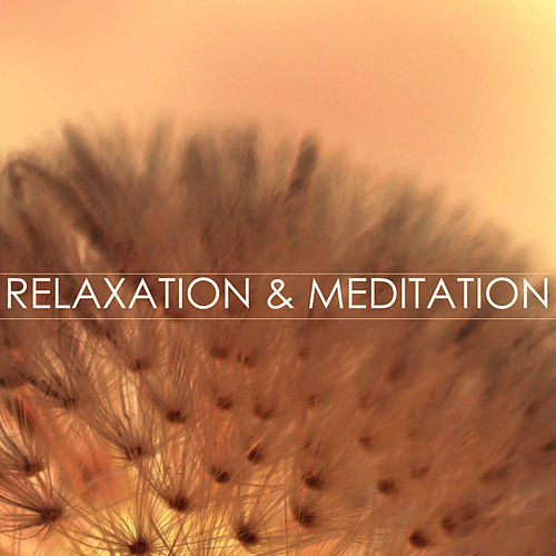 Relaxation & Meditation Background Music de Relaxation And Meditation