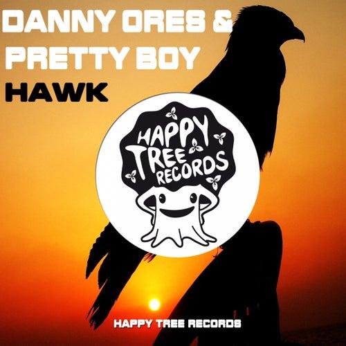 Hawk by Danny Ores