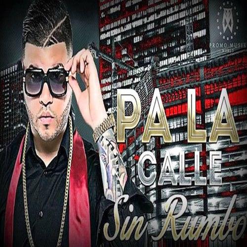 Pa' la Calle Sin Rumbo (feat. Perreke) by Farruko