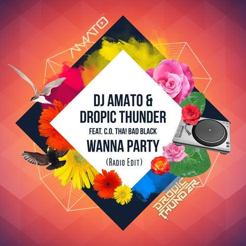 Wanna Party (feat. C.O. Tha! Bad Black) [Radio Edit] by DJ Amato