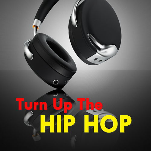 Turn Up The Hip Hop by Various Artists