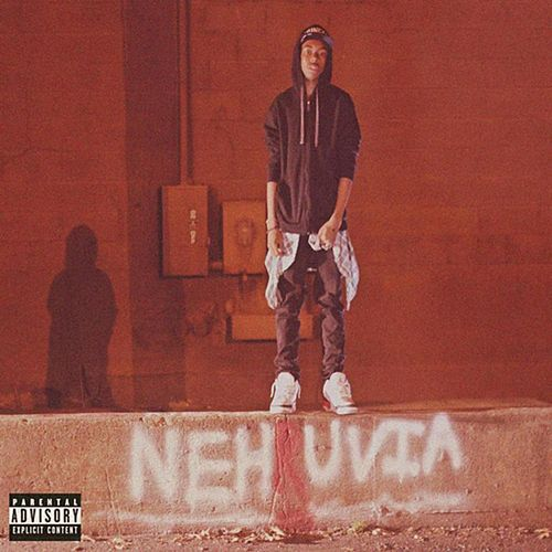 Nehruvia by Bishop Nehru
