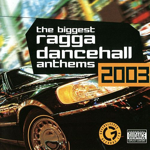The Biggest Ragga Dancehall Anthems 2003 von Various Artists