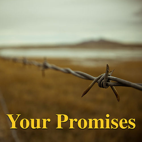 Your Promises de Various Artists
