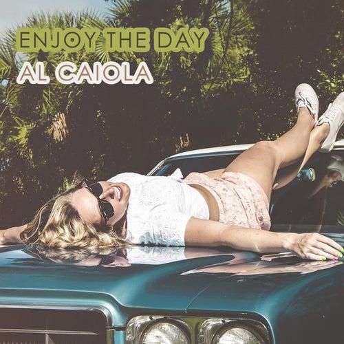 Enjoy The Day by Al Caiola