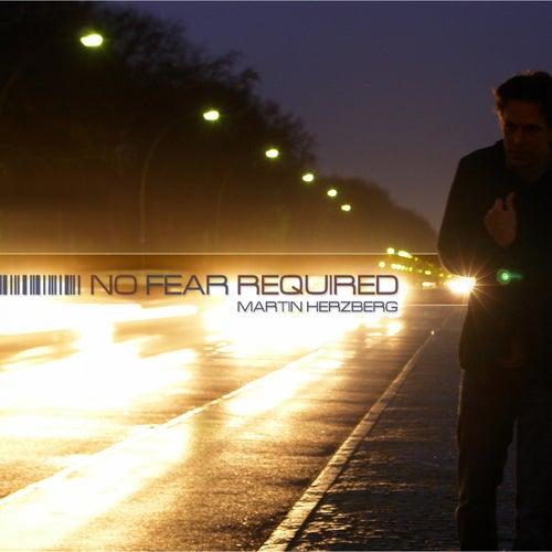 No Fear Required von Martin Herzberg