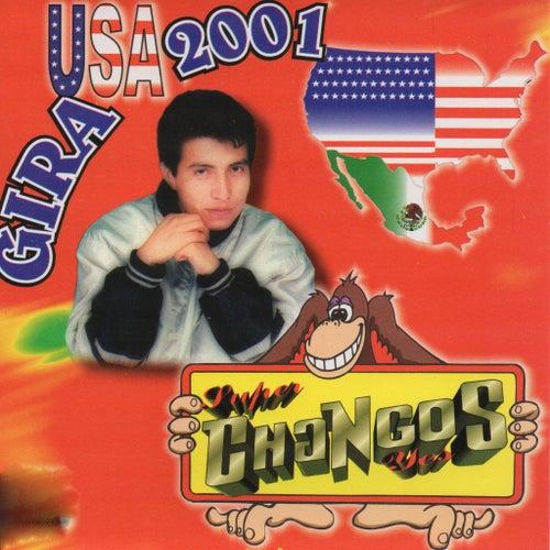 Gira USA 2001 de Various Artists
